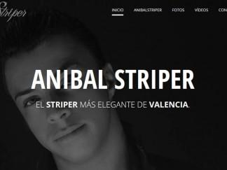 DISEÑO WEB PARA ANIBAL STRIPER